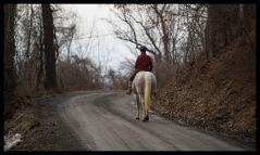 An equestrian rides along Furnace Mountain Road near Taylorstown in Loudoun County Virginia. (Photo by Douglas Graham/WLP)