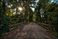 Western Loudoun's historic dirt road known as Furr Road outside of the Village of Bloomfield. (Photo by Douglas Graham/WLP)