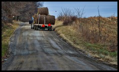 A hay tractor makes its way along Purcelllville Road near Morrisonville in Loudoun County. (Photo by Douglas Graham/WLP)