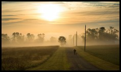 Tara Wassing walks her dog in early morning fog near Hillsboro in Western Loudoun County Virginia. (Photo by Douglas Graham/WLP)