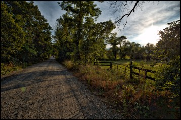 Western Loudoun's historic dirt road known as Hollow Oak Road outside of the Village of Bluemont. (Photo by Douglas Graham/WLP)
