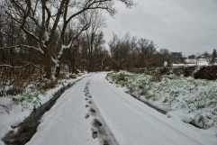 The seasons first winter weather blanketed Beaverdam Bridge Road in snow near the Village of Philomont. (Photo By Douglas Graham/WLP)