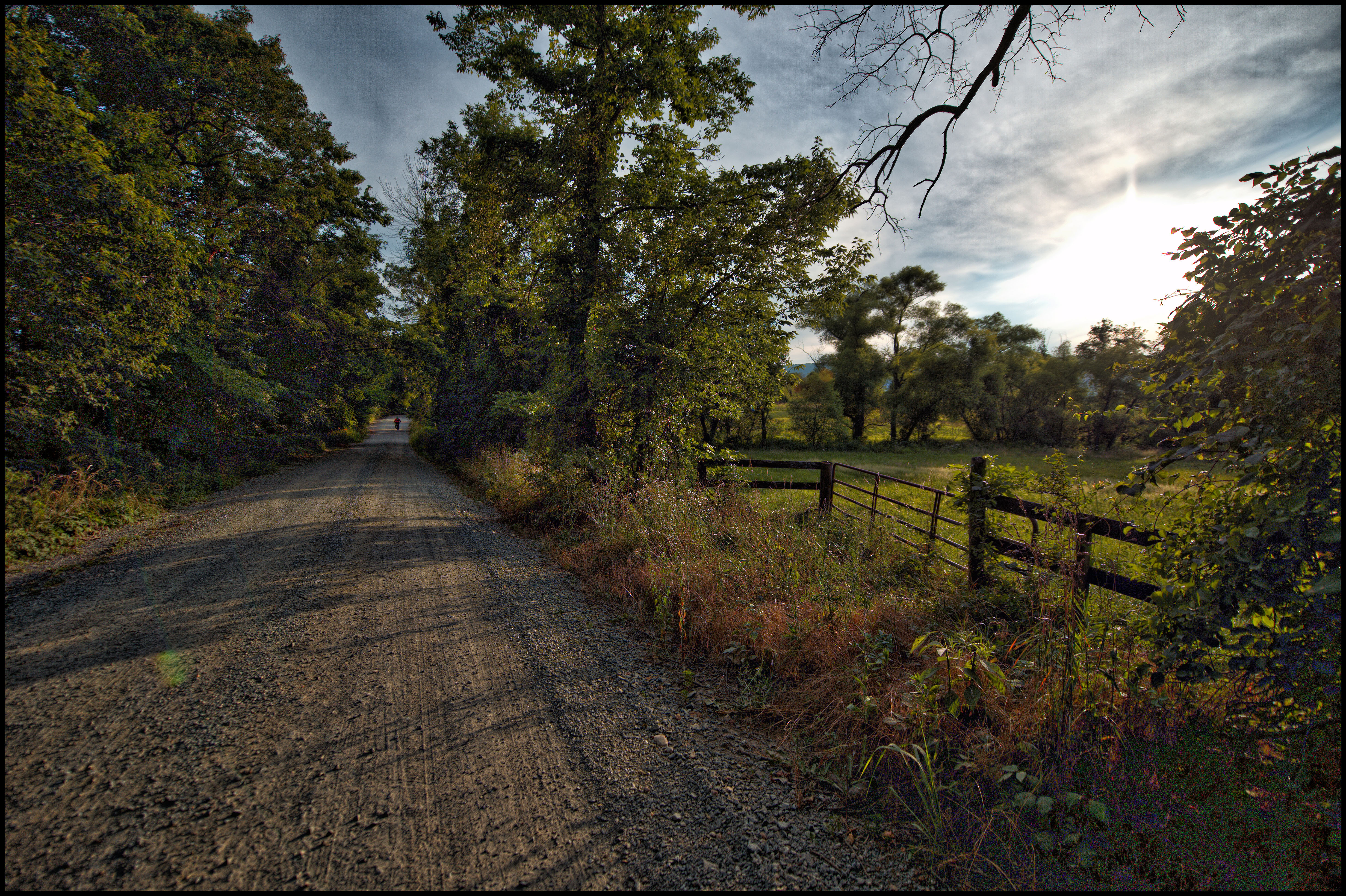 Hollow Oak Road